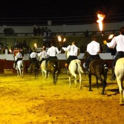 Spectacle-equestre-les-chevaux-de-feu-D70_8019
