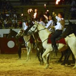 Spectacle-equestre-les-chevaux-de-feu-D70_8028
