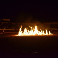 Spectacle-equestre-les-chevaux-de-feu-D70_8050