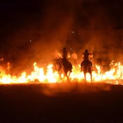 Spectacle-equestre-les-chevaux-de-feu-D70_8060