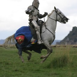 spectacle-equestre-chevalerie-tournoi-267_6730-3