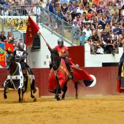 spectacle-equestre-chevalerie-tournoi-D70_7835