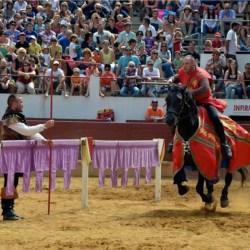 spectacle-equestre-chevalerie-tournoi-gregoire