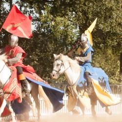 spectacle-equestre-chevalerie-ranrouet-2016-petit-bleus-photos-img_0276