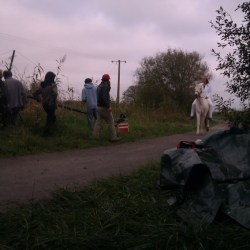 tournage-cheval-equestre-voyageanantes-IMAG0211
