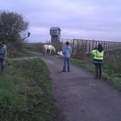 tournage-cheval-equestre-voyageanantes-IMAG0217