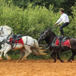 spectacle-equestre-2019-plesse-IMG_0079