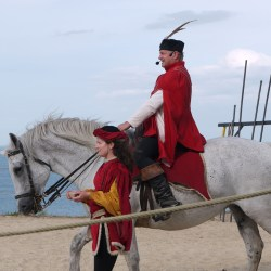 chevalerie-moyen-age-P1520143