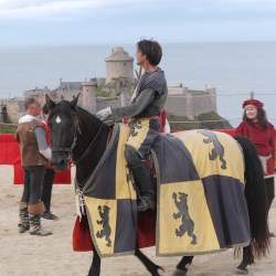 chevalerie-moyen-age-P1520582