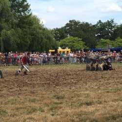 spectacle-equestre-2020-les-celtes-AG-Divino-Aventureaugalop-05