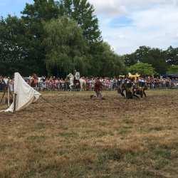 spectacle-equestre-2020-les-celtes-AG-Divino-Aventureaugalop-06