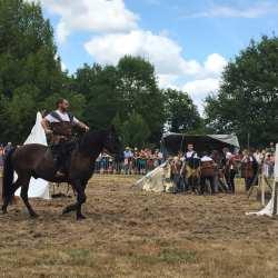 spectacle-equestre-2020-les-celtes-AG-Divino-Aventureaugalop-15