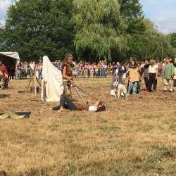 spectacle-equestre-2020-les-celtes-AG-Divino-Aventureaugalop-18