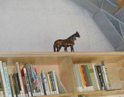 Ellen Welten heeft haar Paarden ook in het Veluws Museum gestald.