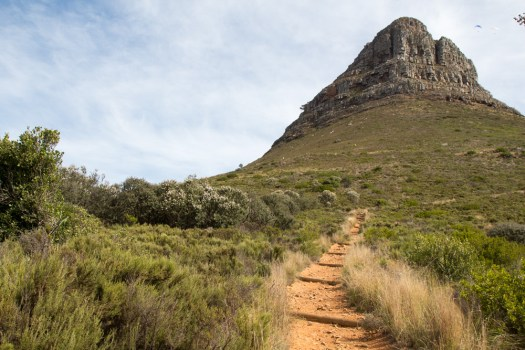 cape town lions head mountain hiking path
