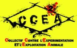 Logo-CCE-A-terminee