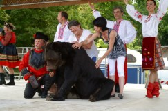 Le public invité à caresser l'ours Micha