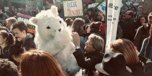 La mascotte d'ours polaire d'AVES France fait sensation lors de la Marche pour le Climat à Paris