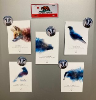 magnet blaireau et cartes postales animaux sauvages