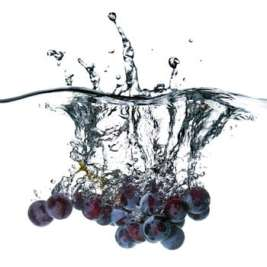 grape seed extract skin care