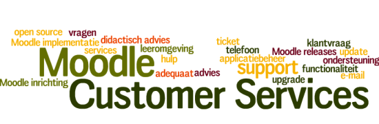 Customer Services Moodle
