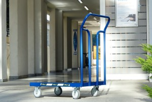 avexcor-transportna-kolica-sa-platformom
