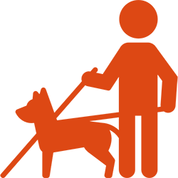 Les Chiens Guides Association Valentin Hay