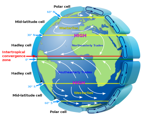 Circulation of the Hadley, Ferrel and Polar cell. Photo: NASA – Wikimedia