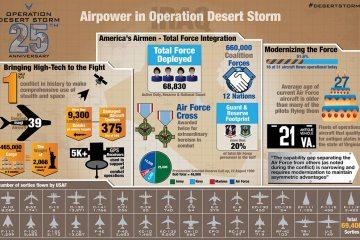 25 anni di desert storm