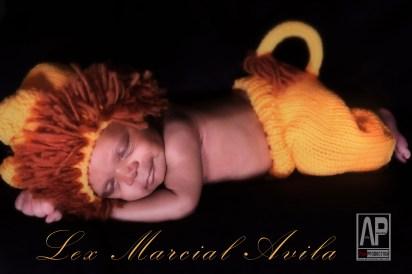 Lex Marcial Avila Infant Baby Photo Shoot by Avila Production A Lion sleeps tonight