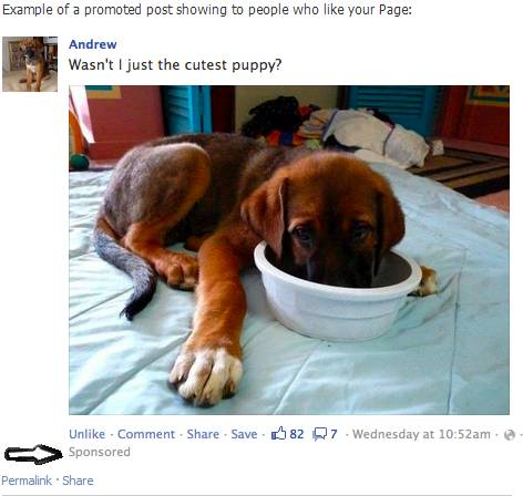Facebook introduces Promoted Page Posts 4
