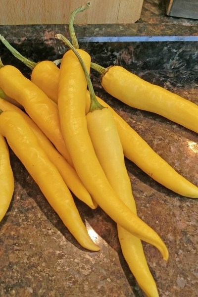 LONG YELLOW ARMENIAN PEPPER PICKLES