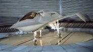 Gbirdofprey-2