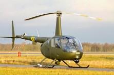 Gr44raven-1