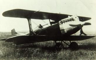Ggrigorovichi2