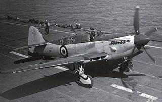 Gfirefly-2