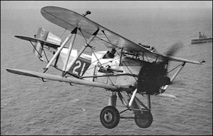 Gflycatcher-2