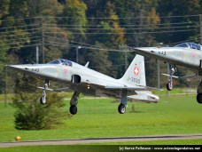 Northrop F-5E Tiger II - Meiringen