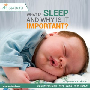 What is Sleep and Why is It Important?