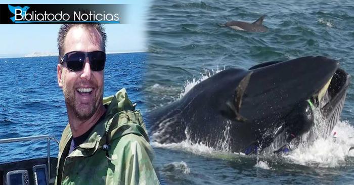 Así como Jonás, hombre es tragado por ballena en medio del mar con final inesperado