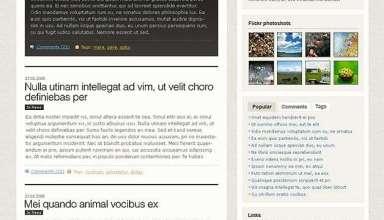 perfection - Perfection Wordpress Theme