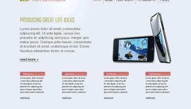 raptor viva wordpress theme - Raptor Premium Wordpress Theme
