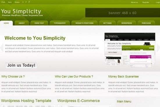 yousimplicity 550x368 - You!Joomla Premium Wordpress Themes