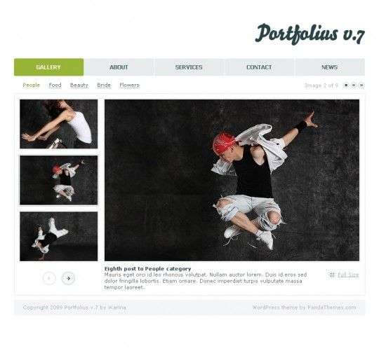 portfolius7 550x514 - Panda Wordpress Themes