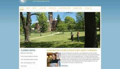 avj universidad viva wordpress theme - Universidad Wordpress Theme