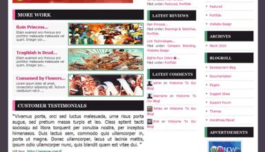 modesto wordpress theme - Modesto Premium WordPress Theme