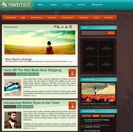 vintmint wpnow theme - WpNow WordPress Themes