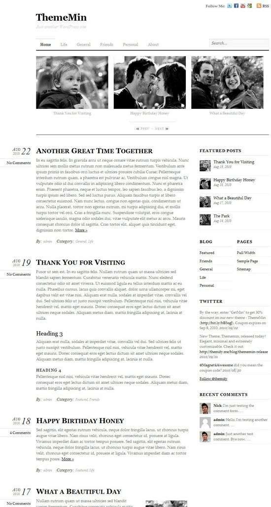 thememin premium wordpress theme - ThemeMin Premium WordPress Theme