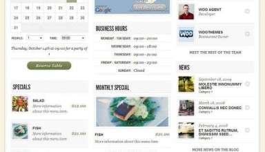 diner wordpress theme - Diner Premium WordPress Theme