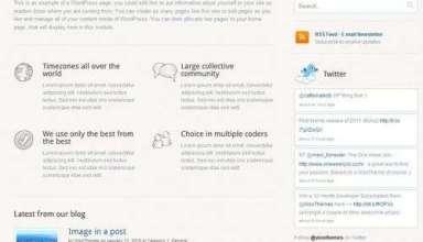 biznizz wordpress theme - Biznizz Premium WordPress Theme